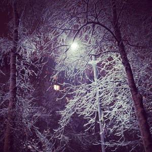 Первый снег в Петербурге в снимках Instagram