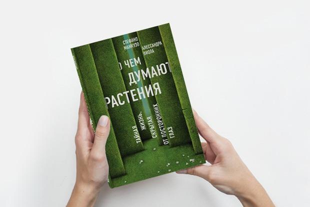 «О чем думают растения»: Как деревья общаются между собой — Книга недели на The Village
