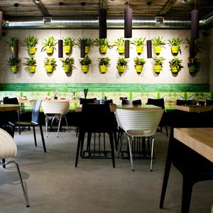 Новое место: Вегетарианское кафе Fresh
