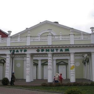 В Москве закрылся театр «Эрмитаж» — Ситуация на The Village