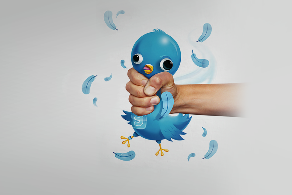 Птичка вылетела: 7 важных фактов об IPO Twitter — Кейсы на The Village