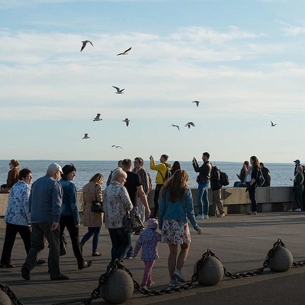 Петербург — город-курорт: Три променада с видом на море  — Общественные пространства на The Village