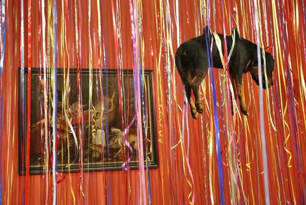 Птичку жалко: Музейный куратор и зоозащитник — о выставке Фабра в Эрмитаже — Ситуация на The Village