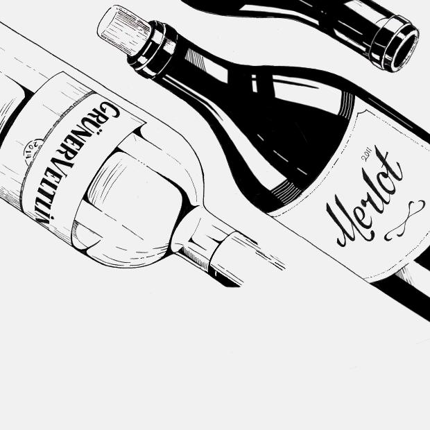 Всё о 9 сортах вина: вкус, аромат, происхождение и особенности
