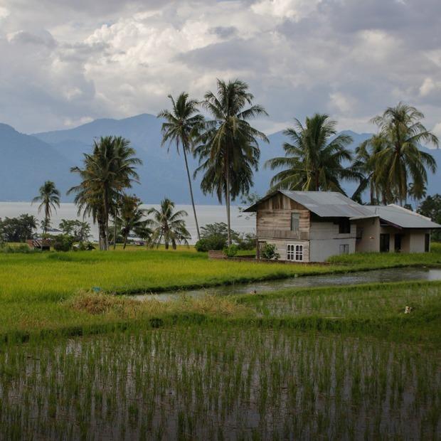 Не только Бали: Большой гид по Индонезии — Путешествия на The Village