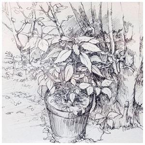 Дача «Циферблата» — Клуб рисовальщиков на The Village
