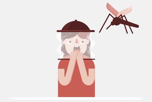 Большие комары — малярийные? Их надо бояться?