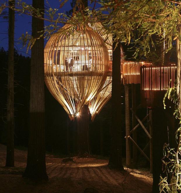 Дизайн от природы: Лучшие проекты пяти континентов — Дизайн от природы на The Village