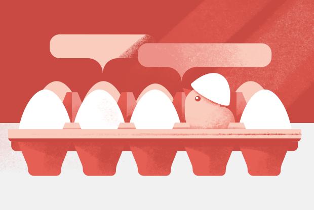 Можно ли хранить яйца не в холодильнике? — Съесть вопрос на The Village