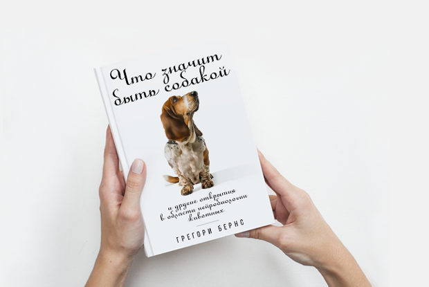 Что понимают собаки — Книга недели на The Village