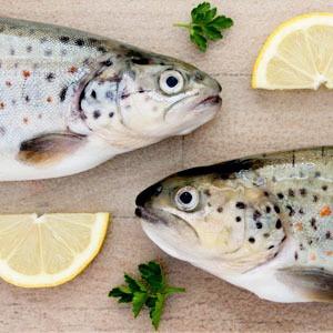 Как люди с аллергией на продукты питаются в ресторанах  — Личный опыт на The Village