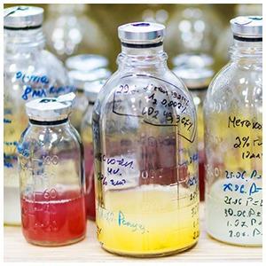 Микробиолог Андрей Шестаков — о полезных микробах, вреде молока и финансировании науки — Ситуация на The Village