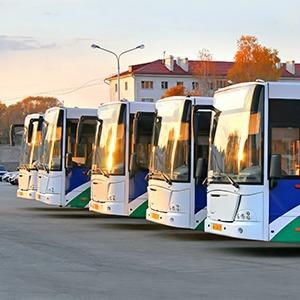 Как помочь россиянам дождаться автобуса — Новая география на The Village