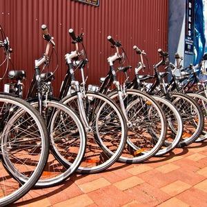 Городские байки: 4 новых велопроката в Петербурге — Велосипеды на The Village