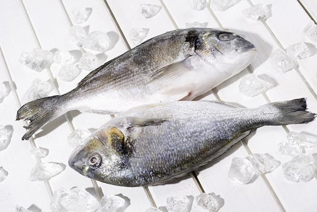 Как отличить размороженную рыбу от охлаждённой — Как надо на The Village