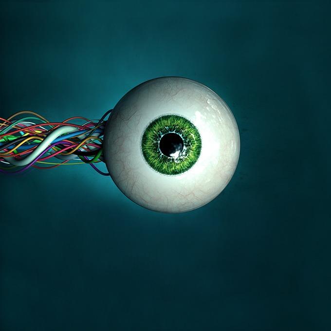 Это интернет, детка: Кто зарабатывает на слежке за пользователями Сети — Истории на The Village