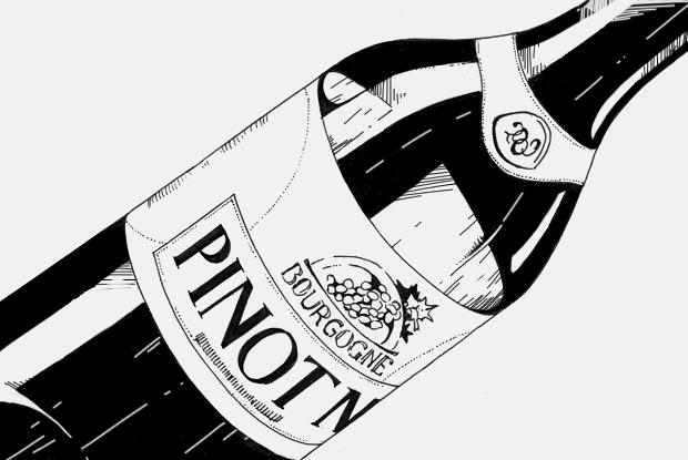 Как правильно выбрать пино-нуар  — Бухучет на The Village