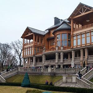 Народное движение: За чем едут в резиденцию Виктора Януковича — Ситуация на The Village