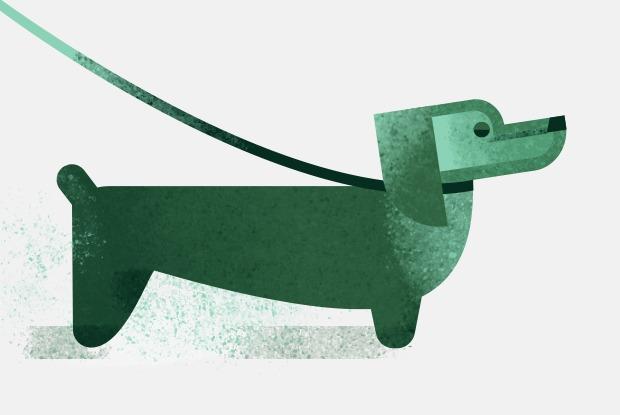 Откуда берутся классические клички животных? — Есть вопрос на The Village