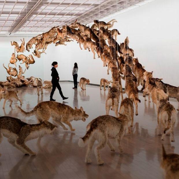 Порох, Хиросима и мир без границ: Что нужно знать о Цай Гоцяне — Искусство на The Village