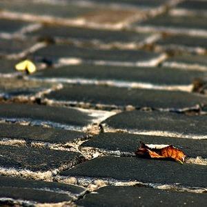 Брусчатку с Баррикадной перенесут на Красную площадь — Ситуация на The Village