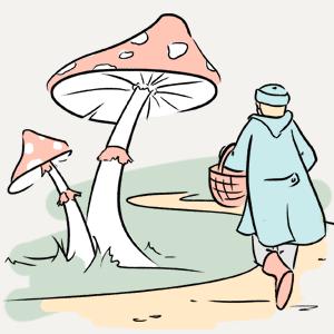 Можно ли в Москве собирать грибы? — Есть вопрос на The Village