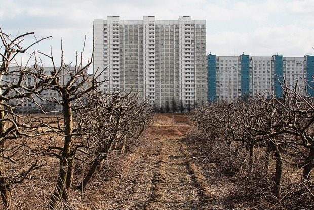 Почему отбирают земли у Тимирязевской академии — Истории на The Village