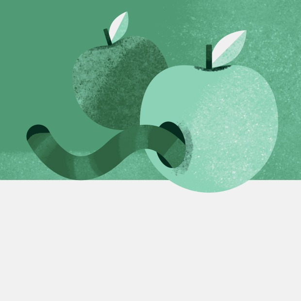 Правда ли, что червивые яблоки натуральнее обычных? — Съесть вопрос на The Village