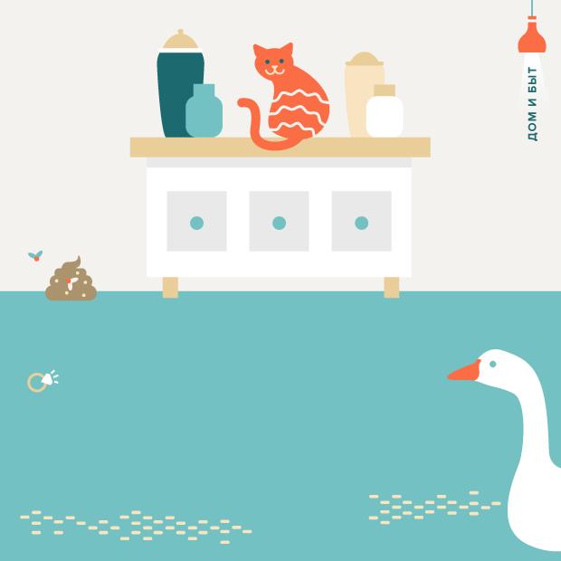 12 странных и необычных заданий по дому от пользователей YouDo