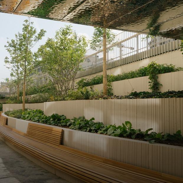 Как выглядят амфитеатр и променад Политехнического музея после реконструкции — Общественные пространства на The Village