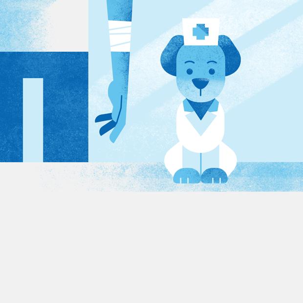 Заживёт ли рана быстрее, если её полижет собака?