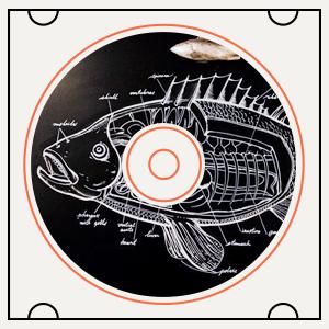 Какая музыка играет в рыбном ресторане Boston Seafood & Bar  — Пока ты ел на The Village
