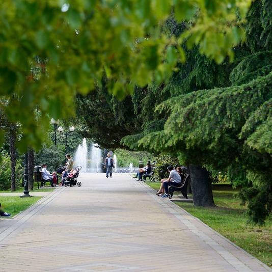 Парки и скверы: 5 нетипичных мест для прогулок в Сочи