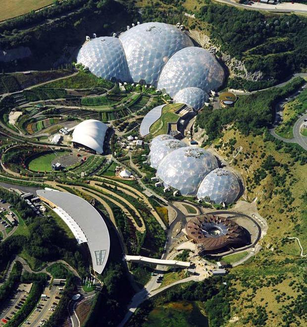 Дизайн от природы: Британские тропики и «цветочная» архитектура — Дизайн от природы на The Village