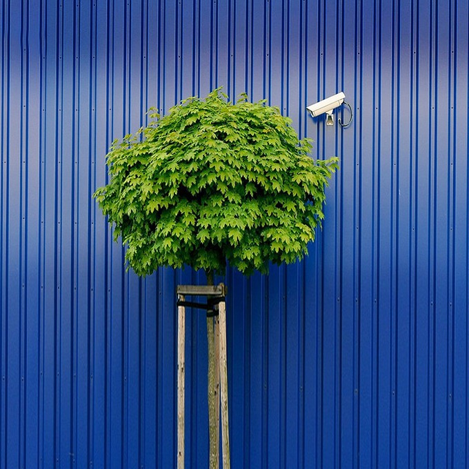 Промышленный шпионаж: 8 сервисов для слежки за конкурентами — Облако знаний на The Village