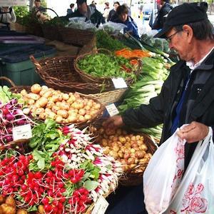 Шесть новых рынков появится в спальных районах Петербурга — Ситуация на The Village