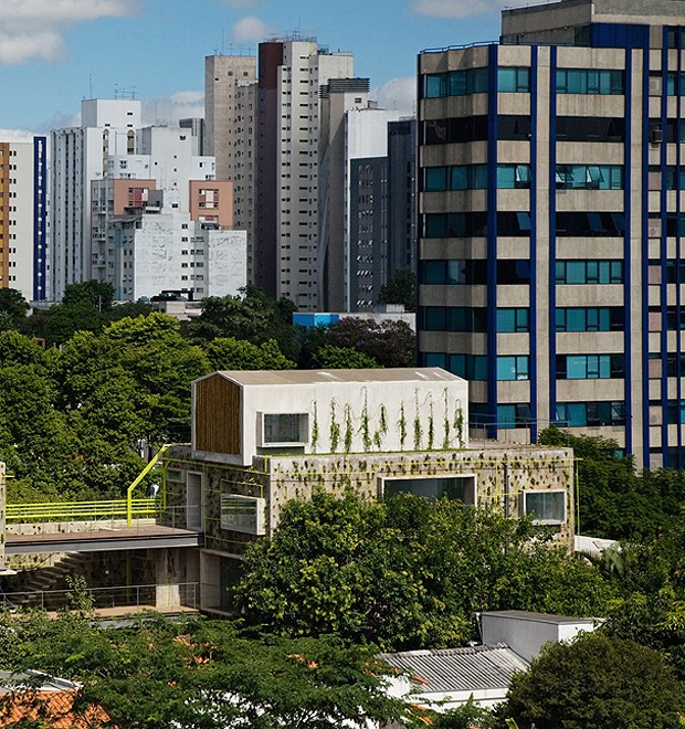 Дизайн от природы: Тропическая архитектура Бразилии — Дизайн от природы на The Village