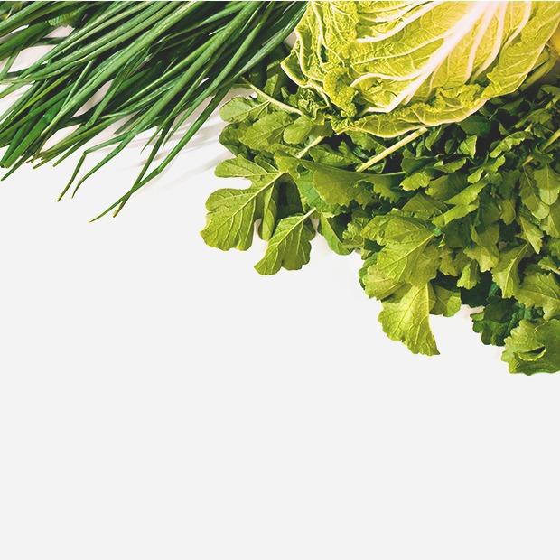 3 способа хитрой, но простой утилизации зелени — Как надо на The Village