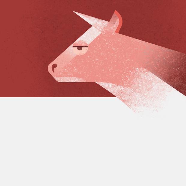 Чем отличается халяльное мясо от кошерного? — Съесть вопрос на The Village