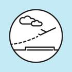 В Шереметьеве начали регистрировать на рейсы через мобильное приложение