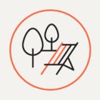 В Южно-Приморском парке установили скамейки с бесплатным Wi-Fi