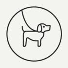 В Бауманском саду пройдёт выставка бездомных собак Keep calm and love dogs
