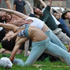 Перед Адмиралтейством все лето будут идти уроки гимнастики