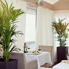Новости ресторанов: Второй Paul, Chili's и Zu Cafe на Тверской, новые шеф-повара в Dodo и Les Menus