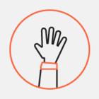 «ВКонтакте» выпустила стикеры с жестовым языком
