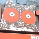 В Москве хотят открыть мужские бары Hooters