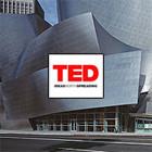 6 лекций о городской среде и общественных пространствах