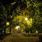 Парк «Сокольники» реконструируют за 11,53 млрд. рублей