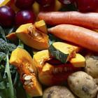 На этих выходных в Москве пройдёт фермерский фестиваль Slow Food Ulitka
