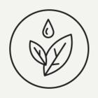 Recycle организовали в библиотеке имени Достоевского экопарковки для цветов